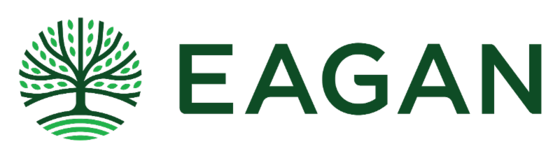 City of Eagan logo
