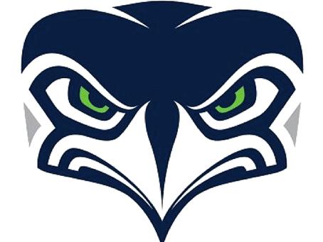 Seattle Seahawks Alternate Logo: A Disturbing Perspective