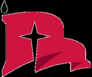 Raider-flag-3c-rgb.png