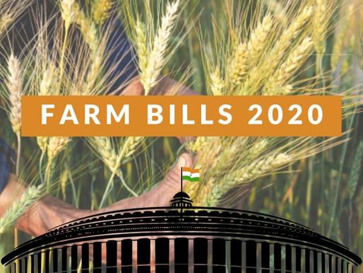 The Farm Bill, 2020