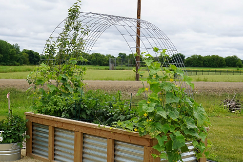 Steel Trellis for 6' - 12' Raised Garden Bed (2021 Pricing)