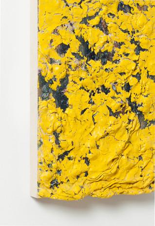 paint YELLOW DETAIL2.jpg