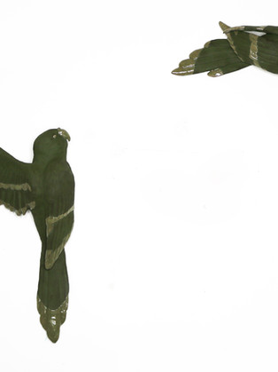 London Parakeets by  Roseanne Connolly