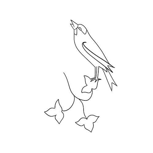 Cours Vidéo - Oiseaux à travers les siècles - Style Transition