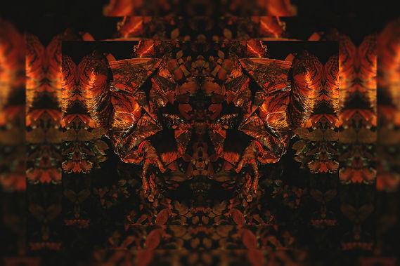 orangefinal.jpg