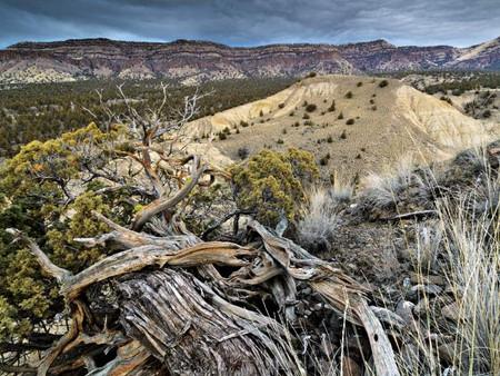 Sutton Mountain Plan Earns Local Support (Bend Bulletin)