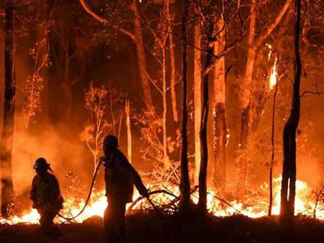Australia is on Fire, Global Warming is Real, and the World Doesn't Care