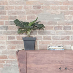 Тумба из массива дерева от мебельного бю