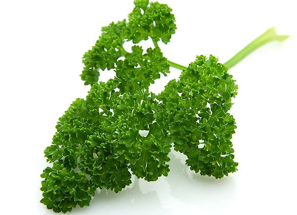 CURLEY PARSLEY  ( 100G PACK )