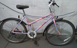 Raleigh 'Coco' Ladies 1 940025
