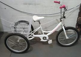 Pedalpals 'Trimontis' Tricycle 940363