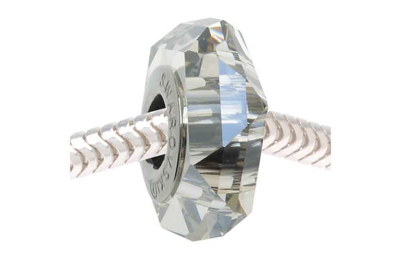 Fortune Silver Shade