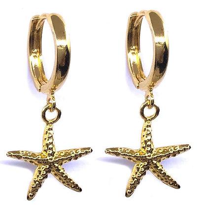 Aros Estrella de Mar 24K