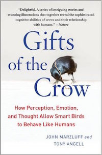 Books Worth Reading - Animal Behavior