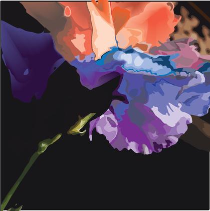 rainbowflowerblend.png