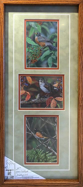 Framed Triple Print #1