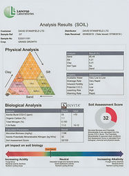 analysis%25202_edited_edited.jpg