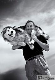 Alaskan Malamutes  Fotoworkshop