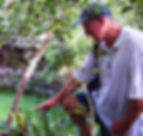 Walking Tour Hidden Cenotes Yucatan