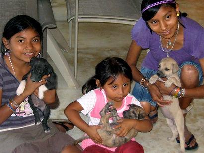 Animal Welfare Education Ek Balam Eco Hotel Yucatan