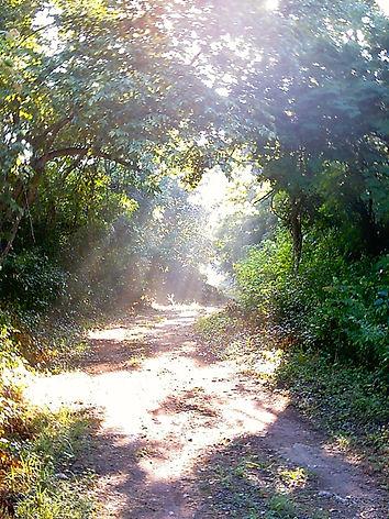 Walking Tour|Cycling Tour |Hidden Sites Ek Balam Eco Hotel Yucatan