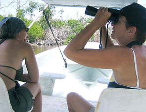 Bird Watching Rio Lagartos Tour Genesis Ek Balam Eco Hotel Yucatan