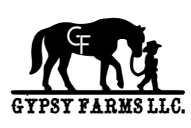 Gypsy Farms T-shirt