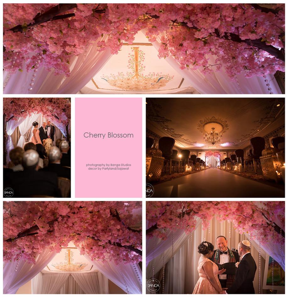 Wedding Gallary 1 (deleted 1cc7d7482f65d