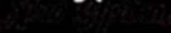 NSElogoFINAL6.7''x35.5''black.png