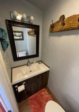 Dragonfly- Bathroom