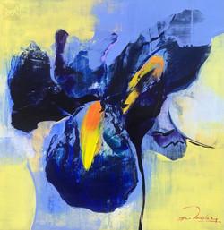 Iris - A Study in Blue
