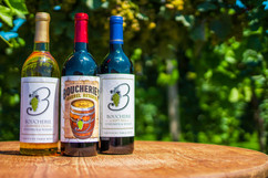 Boucherie Vineyards and Winery - Bottles