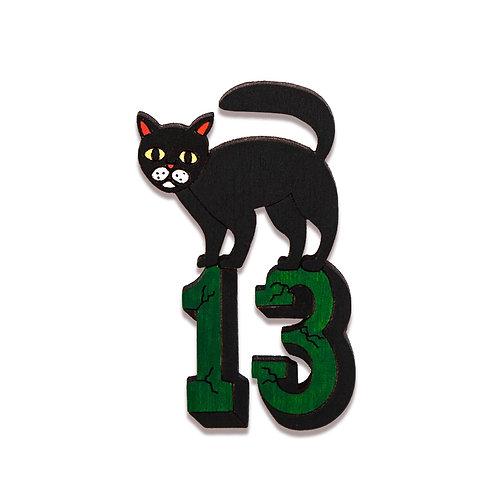 Черный кот 13