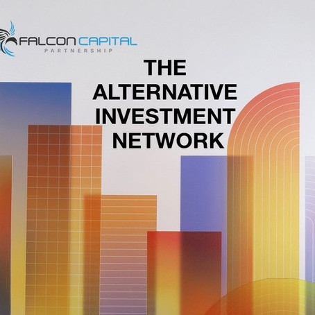 THE ALTERNATIVE INVESTMENT NETWORK