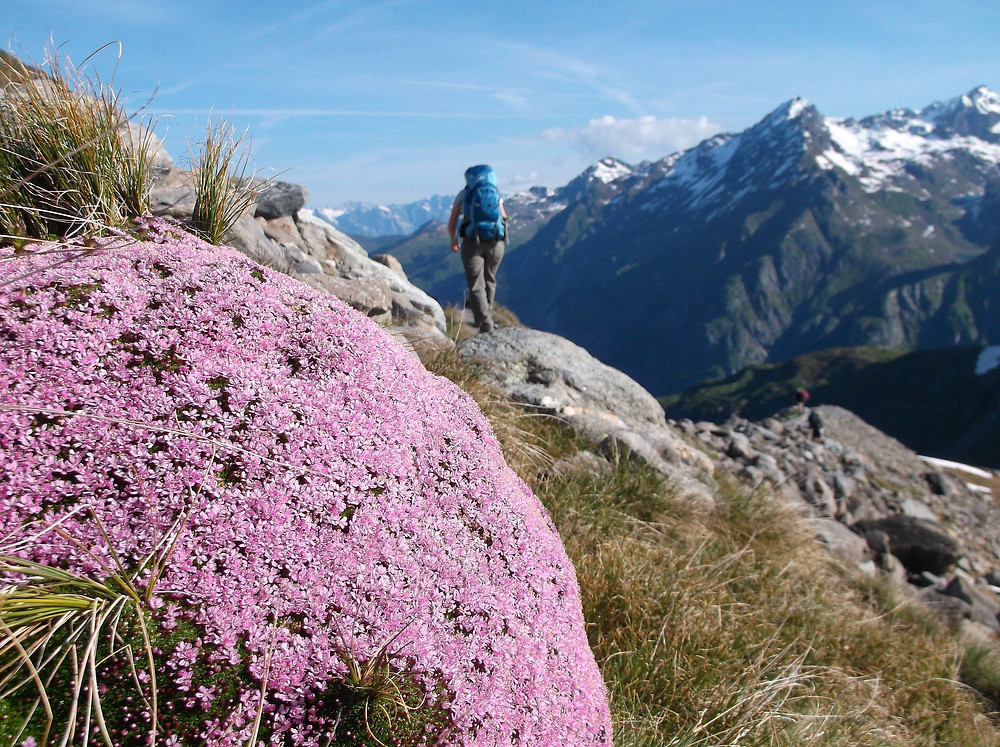 Solo hiking on the Tour du Mont Blanc Alternative