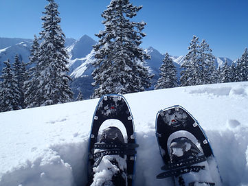 Alps in winter and snowshoes