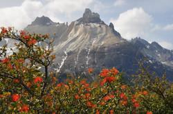 Los Cuernos - The Horns in Patagonia