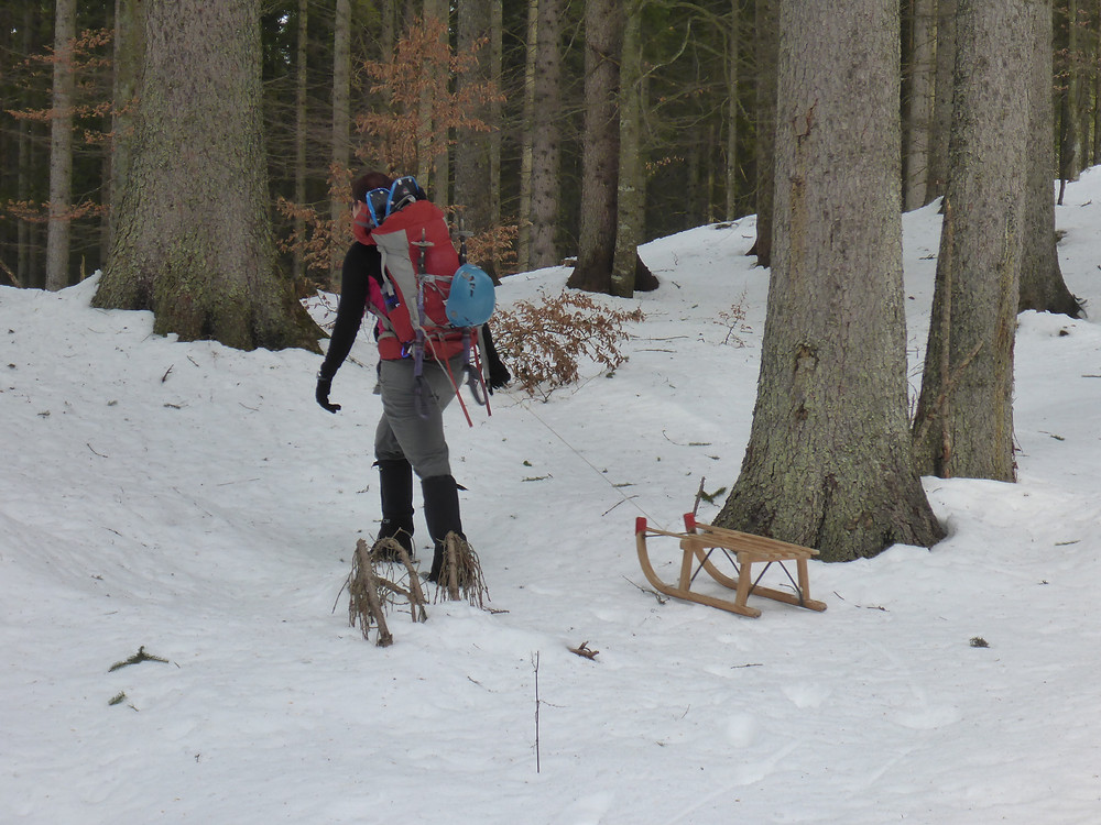 Person pulling a sled behind him through a snowy forest