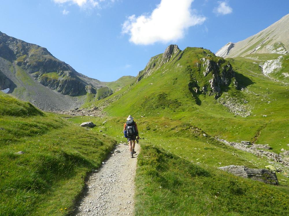 Hiker walking on Tour du Mont Blanc's treks through green mountain fields