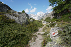 The Haute Route Hike and its trails