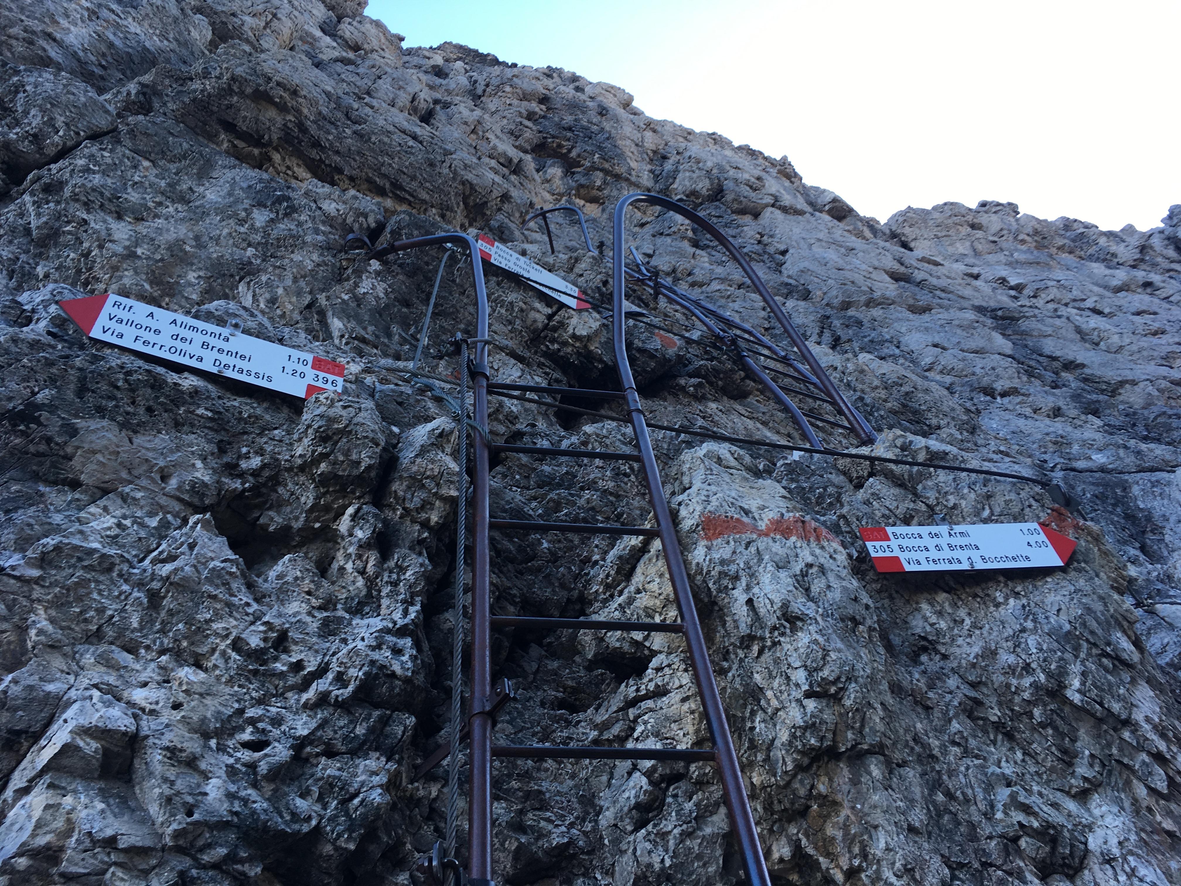 Ladder on a Via Ferrata in the Alps