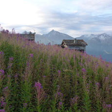 Hut to Hut in the French Alps Trek
