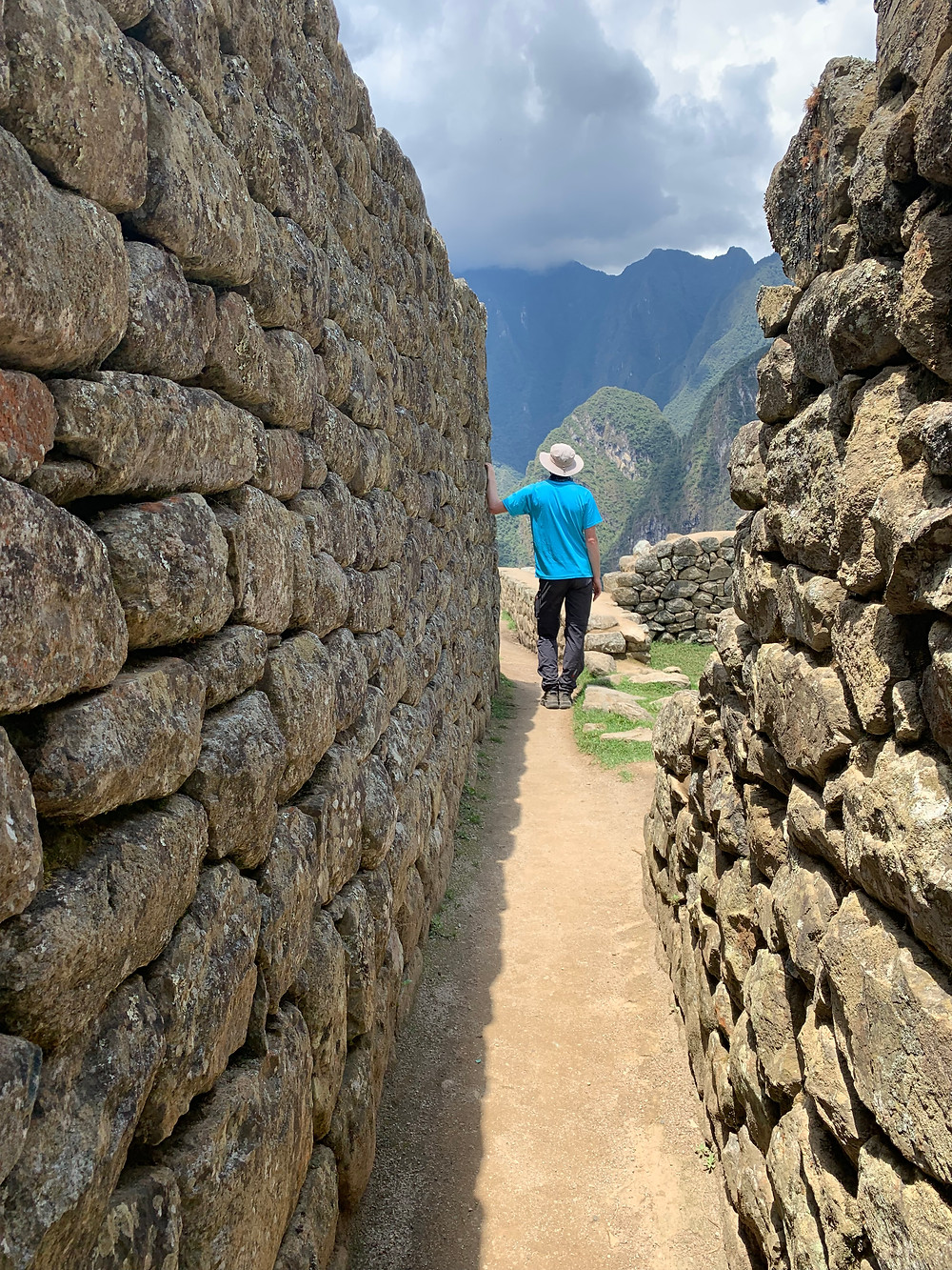 Hiding among the walls of Machu Picchu