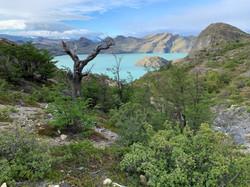 Lake views on the W-Trek in Patagoni