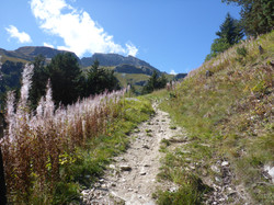 One of the French Alps hiking trails
