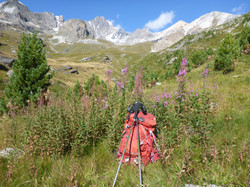 French Alps in summer