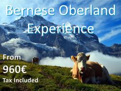 Bernese Overland Traverse