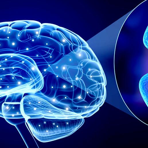 Neurotransmitter profiel
