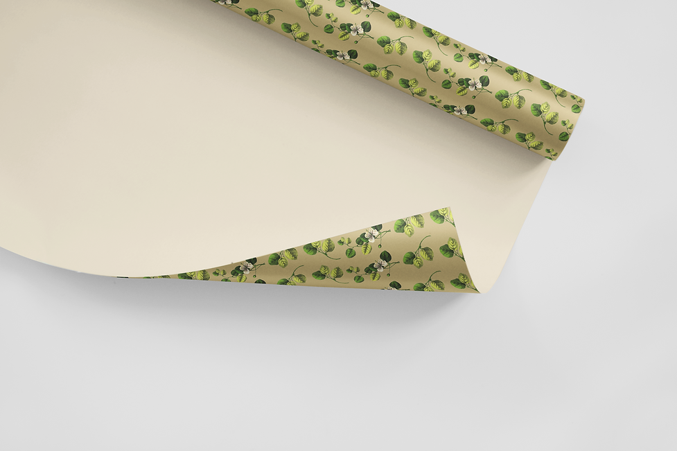 Craft Studio Wrapping Paper Design