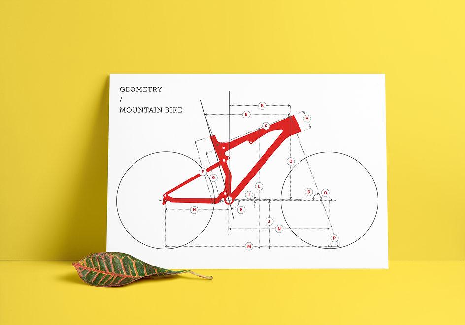 ChooseMyBicycle.com Mountain Bike Geometry Illustration